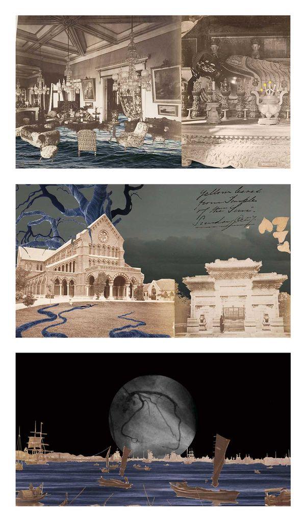 113-artwork-focus