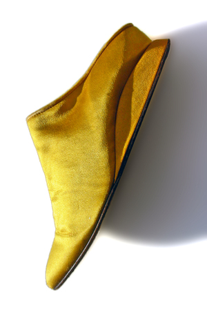 Shoe_golden