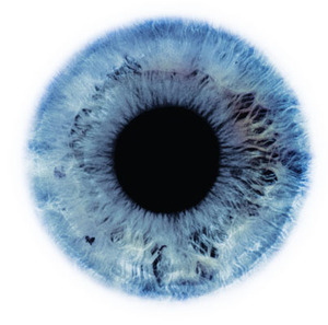Eye_scapes_07