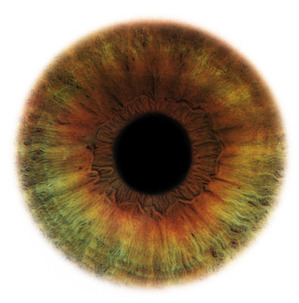 Eye_scapes_13
