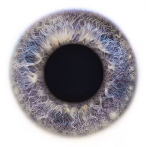 Eye_scapes_15